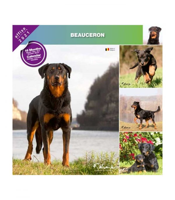Calendrier Beauceron 2021