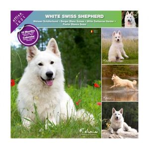 Calendrier Berger Blanc Suisse 2021