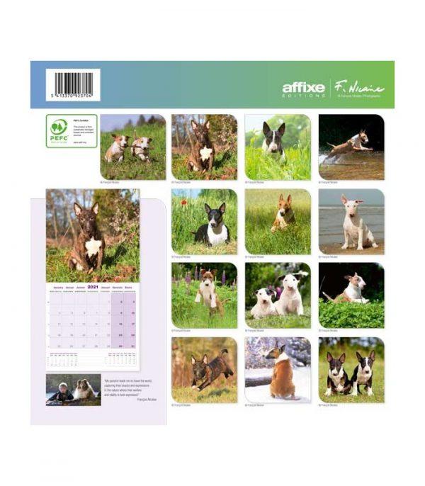 Calendrier Bull Terrier 2021 1