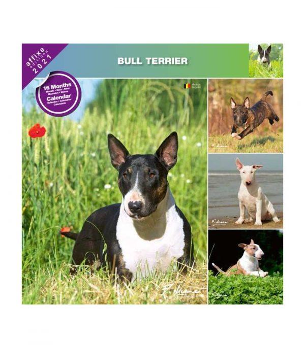 Calendrier Bull Terrier 2021