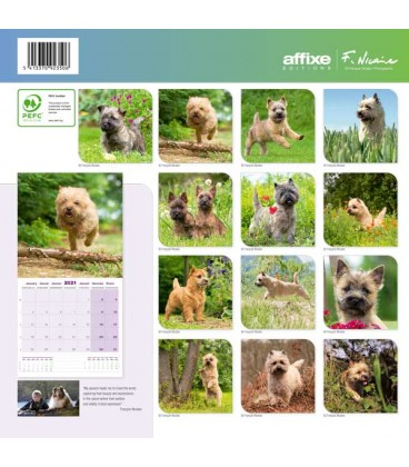 Calendrier Cairn Terrier 2021 1