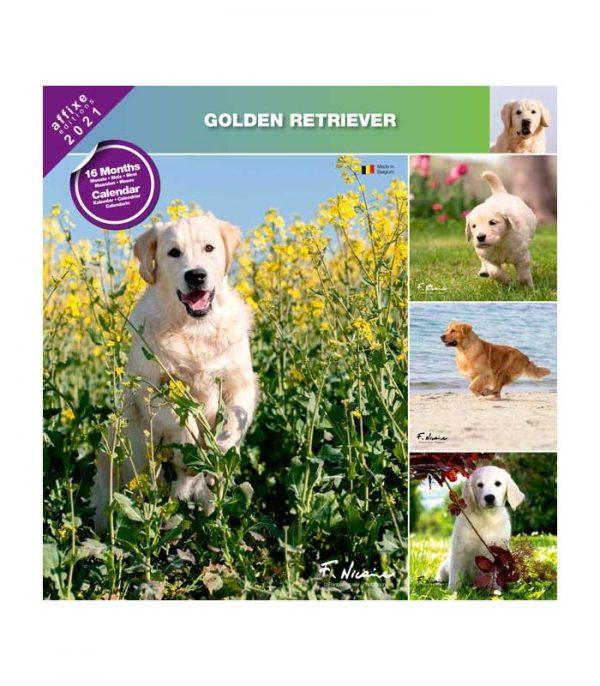 Calendrier Golden Retriever 2021