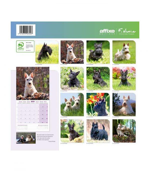 Calendrier Scottish Terrier 2021 1