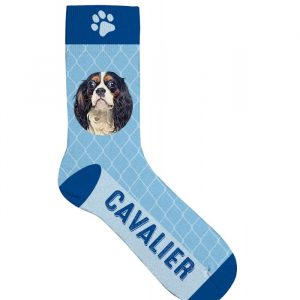Chaussettes Cavalier King Charles